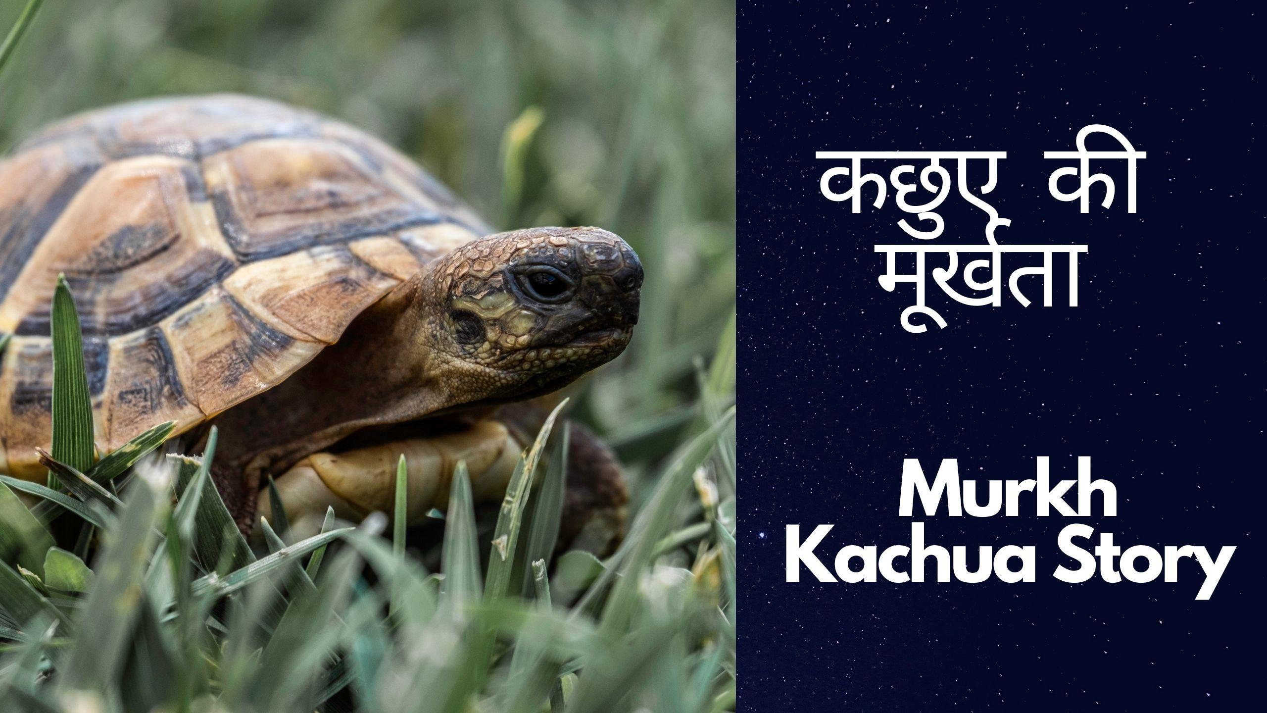 Murkh Kachua Story